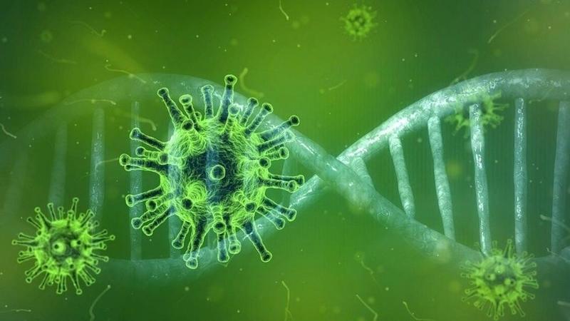 coronavirus bridge loans